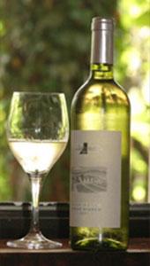 Wein mit Glas